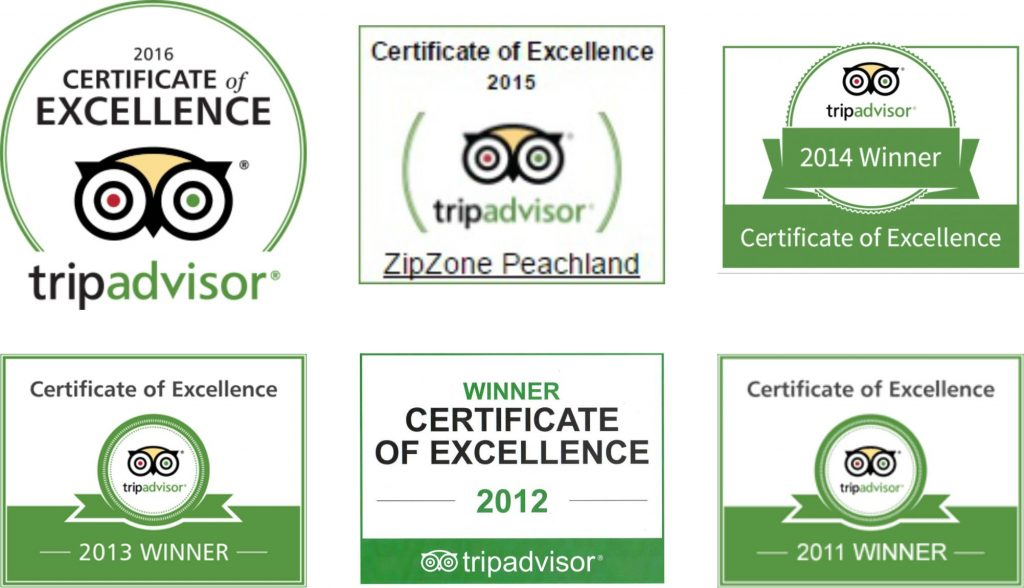 TripAdvisor Testimonials & Certificate of Excellence